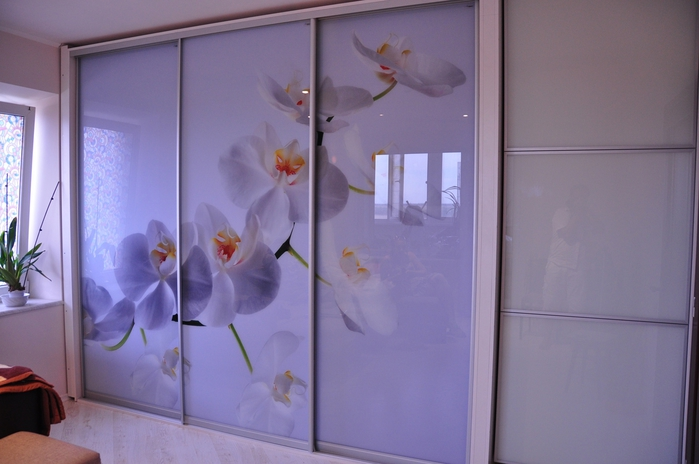 Картинки по запросу Фотопечать на раздвижных дверях